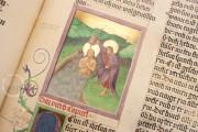 Ottheinrich's Bible, Munich, Bayerische Staatsbibliothek, Cgm 8010/1.2 − Photo 18