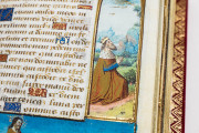 Book of Hours of Guyot Le Peley, Troyes, Bibliothèque Municipale de Troyes, Ms. 3901 − Photo 10