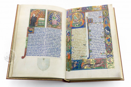 The Peterborough Psalter in Brussels, ms. 9961-62 - Bibliothèque Royale de Belgique (Bruxelles, Belgium) − photo 1