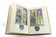 The Peterborough Psalter in Brussels, ms. 9961-62 - Bibliothèque Royale de Belgique (Bruxelles, Belgium) − photo 25