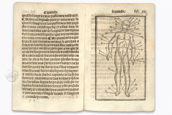 Tractado muy provechoso del anatomia, y phlebotomia..., Munich, Bayerische Staatsbibliothek, RES/ANAT. 297 − Photo 1