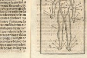 Tractado muy provechoso del anatomia, y phlebotomia..., Munich, Bayerische Staatsbibliothek, RES/ANAT. 297 − Photo 2