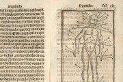 Tractado muy provechoso del anatomia, y phlebotomia..., Munich, Bayerische Staatsbibliothek, RES/ANAT. 297 − Photo 3
