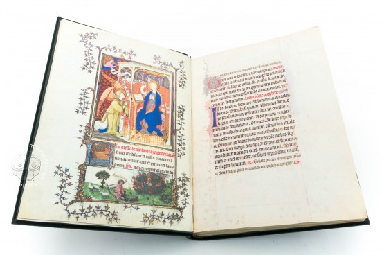 Turin-Milan Hours, Inv. N. 47 - Museo Civico d'Arte Antica (Turin, Italy) − photo 1