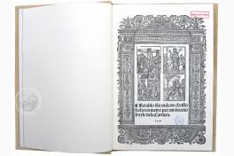 Retablo de la Vida de Christo Fecho en Metro... Facsimile Edition