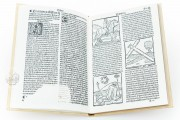 Travels of Sir John Mandeville, R/13148 - Biblioteca Nacional de España (Madrid, Spain) − photo 3