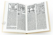 Travels of Sir John Mandeville, R/13148 - Biblioteca Nacional de España (Madrid, Spain) − photo 6