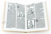 Travels of Sir John Mandeville, R/13148 - Biblioteca Nacional de España (Madrid, Spain) − photo 10