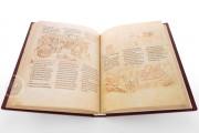 Der Utrecht Psalter, Utrecht, Universiteitsbibliotheek Utrecht, Handschrift 32 − Photo 6