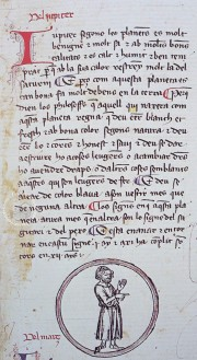 Breviari d'Amor Res. 203 - Biblioteca Nacional de España (Madrid, Spain)