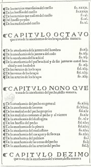 Libro de la Anothomia del Hombre R/2461 - Biblioteca Nacional de Espana (Madrid, Spain)