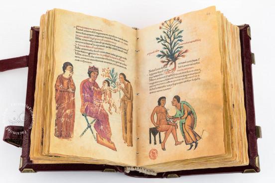 Codex of Medicine of Frederick II, Florence, Biblioteca Medicea Laurenziana, Ms. Plut. 73.16 − Photo 1