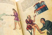 Codex of Medicine of Frederick II, Florence, Biblioteca Medicea Laurenziana, Ms. Plut. 73.16 − Photo 3
