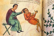 Codex of Medicine of Frederick II, Florence, Biblioteca Medicea Laurenziana, Ms. Plut. 73.16 − Photo 8