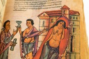 Codex of Medicine of Frederick II, Florence, Biblioteca Medicea Laurenziana, Ms. Plut. 73.16 − Photo 19