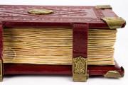 Codex of Medicine of Frederick II, Florence, Biblioteca Medicea Laurenziana, Ms. Plut. 73.16 − Photo 20