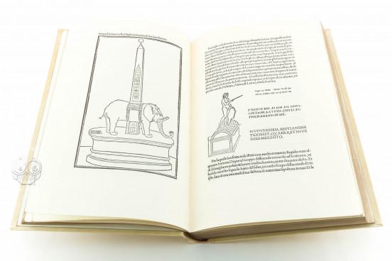 Hypnerotomachia Poliphili, 11.571 - Biblioteca Lázaro Galdiano (Madrid, Spain) − photo 1