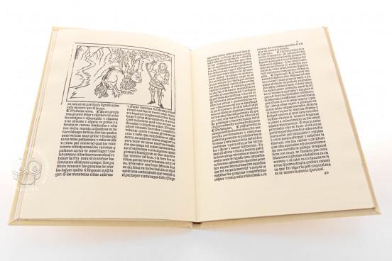 The Twelve Works of Hercules, Inc. 2441 - Biblioteca Nacional de España (Madrid, Spain) − photo 1