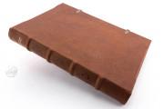 St. Peter Pericopes from St. Erentrud, Clm 15903 - Bayerische Staatsbibliothek (Munich, Germany) − photo 2