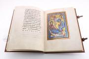 St. Peter Pericopes from St. Erentrud, Clm 15903 - Bayerische Staatsbibliothek (Munich, Germany) − photo 12