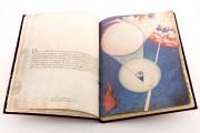 De Aetatibus Mundi Imagines, Madrid, Biblioteca Nacional de España, Dib. 14 -26 − Photo 10
