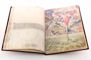 De Aetatibus Mundi Imagines, Madrid, Biblioteca Nacional de España, Dib. 14 -26 − Photo 12
