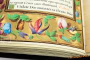 Book of Hours of Philip II, San Lorenzo de El Escorial, Real Biblioteca del Monasterio de El Escorial, Ms Vitrina 2 − Photo 6