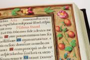 Book of Hours of Philip II, San Lorenzo de El Escorial, Real Biblioteca del Monasterio de El Escorial, Ms Vitrina 2 − Photo 12