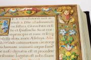 Book of Hours of Philip II, San Lorenzo de El Escorial, Real Biblioteca del Monasterio de El Escorial, Ms Vitrina 2 − Photo 17