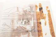 Erotic Papyrus, N. Inv. C. 2031 (CGT 55001) - Museo Egizio (Turin, Italy) Museo Egizio (Turin, Italy) − photo 4