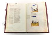 Divine Comedy - Dante Gradenighiano, ms. SC-MS. 1162 (D II 41) - Biblioteca Civica Gambalunga (Rimini, Italy) − photo 14