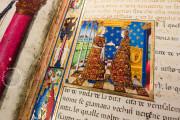 Leggendario Sforza-Savoia, Turin, Biblioteca Reale di Torino, Cod. Varia 124 − Photo 10
