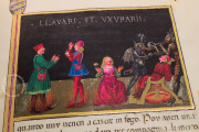 Leggendario Sforza-Savoia, Turin, Biblioteca Reale di Torino, Cod. Varia 124 − Photo 14