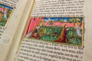 Leggendario Sforza-Savoia, Turin, Biblioteca Reale di Torino, Cod. Varia 124 − Photo 15