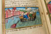 Leggendario Sforza-Savoia, Turin, Biblioteca Reale di Torino, Cod. Varia 124 − Photo 19