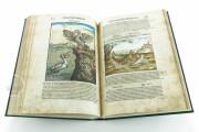 Discorsi del Mattioli Illustrated by Gherardo Cibo, Rari 278 - Biblioteca Alessandrina (Rome, Italy) Biblioteca Alessandrina (Rome, Italy) − photo 4