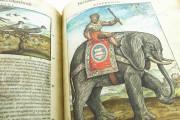Discorsi del Mattioli Illustrated by Gherardo Cibo, Rari 278 - Biblioteca Alessandrina (Rome, Italy) Biblioteca Alessandrina (Rome, Italy) − photo 6