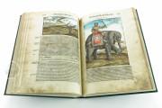 Discorsi del Mattioli Illustrated by Gherardo Cibo, Rari 278 - Biblioteca Alessandrina (Rome, Italy) Biblioteca Alessandrina (Rome, Italy) − photo 7