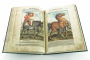 Discorsi del Mattioli Illustrated by Gherardo Cibo, Rari 278 - Biblioteca Alessandrina (Rome, Italy) Biblioteca Alessandrina (Rome, Italy) − photo 12