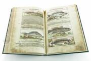 Discorsi del Mattioli Illustrated by Gherardo Cibo, Rari 278 - Biblioteca Alessandrina (Rome, Italy) Biblioteca Alessandrina (Rome, Italy) − photo 17
