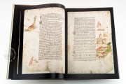 Codex Rustici, Biblioteca del Seminario Arcivescovile Maggiore di Firenze (Florence, Italy) − photo 7