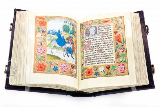 Book of Hours of Alexander VI, Pope Borgia, Bruxelles, Bibliothèque Royale de Belgique, Ms. IV 480 − Photo 1