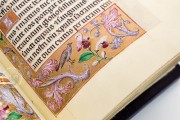 Book of Hours of Alexander VI, Pope Borgia, Bruxelles, Bibliothèque Royale de Belgique, Ms. IV 480 − Photo 3