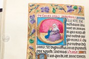 Book of Hours of Alexander VI, Pope Borgia, Bruxelles, Bibliothèque Royale de Belgique, Ms. IV 480 − Photo 10