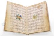 Libro delle Sorti di Lorenzo Gualtieri, It. IX, 87 (=6226) - Biblioteca Nazionale Marciana (Venice, Italy) − photo 3
