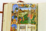 Avicenna's Canon of Medicine, Bologna, Biblioteca Universitaria di Bologna, MS 2197 − Photo 10