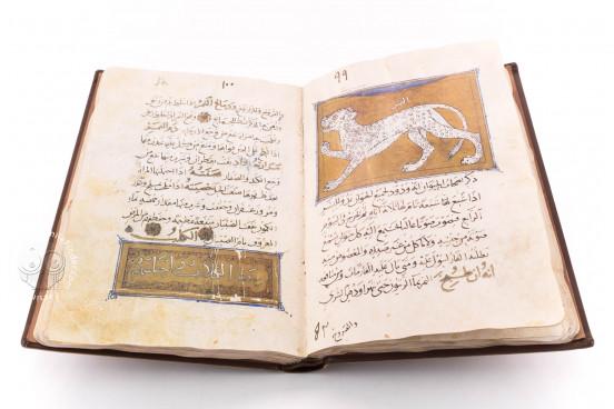 Libro de la Utilidad de los Animales, ms. árabe 898 - Real Biblioteca del Monasterio (San Lorenzo de El Escorial, Spain) − photo 1