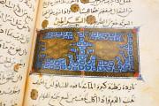 Libro de la Utilidad de los Animales, ms. árabe 898 - Real Biblioteca del Monasterio (San Lorenzo de El Escorial, Spain) − photo 3
