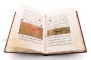 Libro de la Utilidad de los Animales, ms. árabe 898 - Real Biblioteca del Monasterio (San Lorenzo de El Escorial, Spain) − photo 5