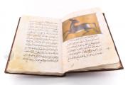 Libro de la Utilidad de los Animales, ms. árabe 898 - Real Biblioteca del Monasterio (San Lorenzo de El Escorial, Spain) − photo 6